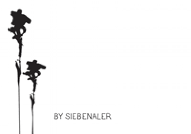 by siebenaler logo site