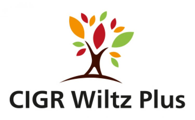 logo-cigr-wiltz-plus